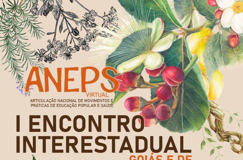 Encontro da Aneps entre Goiás e DF discute saberes e práticas populares no combate as pandemias